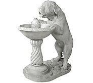 Design Toscano Thirsty Dog Garden Fountain withPump - H282685