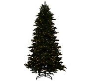 As Is Bethelehem Lights 5 Noble Spruce w/Swift Lock - H208186