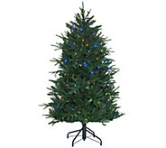Santas Best 5 Heritage Spruce Tree with 7 Function LED Lights - H205687