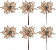 Set of 6 12 Velvet Glittered Poinsettia Picks - H209587