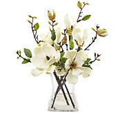 Magnolia Arrangement with Vase by Nearly Natural - H296987