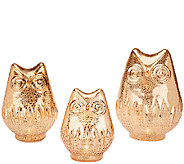 Set of 3 Mercury Glass Owls with Timer - H203388