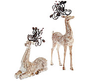 Set of 2 Decorative Scroll Reindeer - H205988