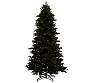 As Is Bethlehem Lights 7.5 Noble Spruce w/ Swift Lock - H208188
