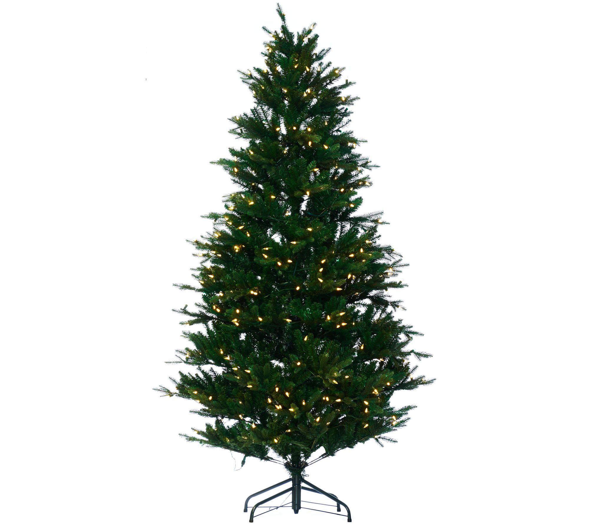 Christmas Tree Collection Trowbridge : Santa s best rgb green balsam fir christmas tree