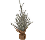 ED On Air 24 Faux Glitter Tree w/ Burlap Base by Ellen DeGeneres - H209088
