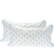 MyPillow Classic Set of 2 King Pillows w/ Color Cording - H209189