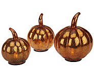 Set of 3 Mercury Glass Pumpkins with Timer by Valerie - H200890
