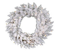 24 White Sparkle Spruce Wreath w/ Dura-Lit Lights - H364090