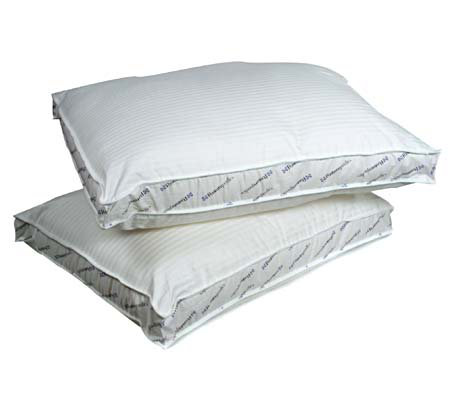 NatureWorks Standard Size Even Edge Set/2 Pillows
