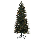 As Is Bethlehem Lights 6.5 Hartford Spruce Christmas Tree - H208191