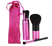 All-In-One 5pc. Makeup Brush Set with Gift Bag by Lori Greiner - H201192