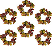 Set of 6 3.5 Beaded Fruit Rings by Valerie - H209792