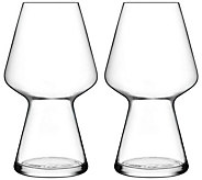 Luigi Bormioli Birrateque Set of Two 23.25-oz Seasonal Glasses - H291592