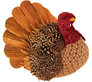 9 Decorative Sisal Turkey with Pinecone Accents - H211493