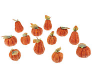Set of 12 Beaded Pumpkins by Valerie - H203494