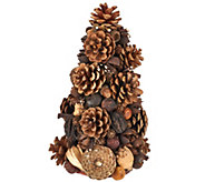 As Is ED On Air Natural Rustic 10 Pinecone Tree Ellen DeGeneres - H210594