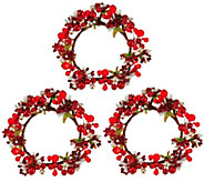 Set of 3 Holiday Berry Candle Rings by Valerie - H206995