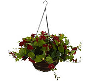 Bethlehem Lights Indoor/Outdoor Impatiens Hanging Basket - H214595