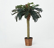 4 Sago Palm Tree by Nearly Natural - H162296