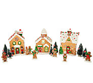 15 piece Gingerbread Village by Valerie - H203096