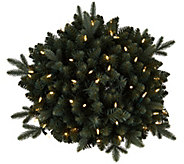 Bethlehem Lights Blue Spruce 24 Lit Urn Filler - H209196