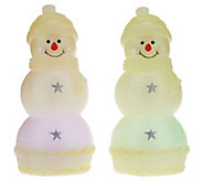 Lightscapes Set of 2 Illuminated 8.5 Holiday Characters - H205397