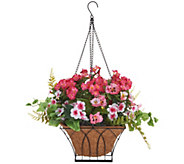 Bethlehem Lights Indoor/Outdoor Pansy Hanging Basket - H214597