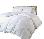 Blue Ridge 1000TC Cotton Down Alt Comf orter F/QN - H283697