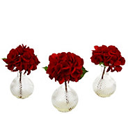 Set of 3 Red Hydrangeas in Glass Vases by Nearly Natural - H290598