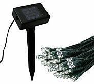 Flipo 100 LED Solar Light Strand - H361698