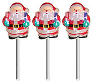 Set of 3 Battery Operated White Twinkling SantaPath Markers - H354499