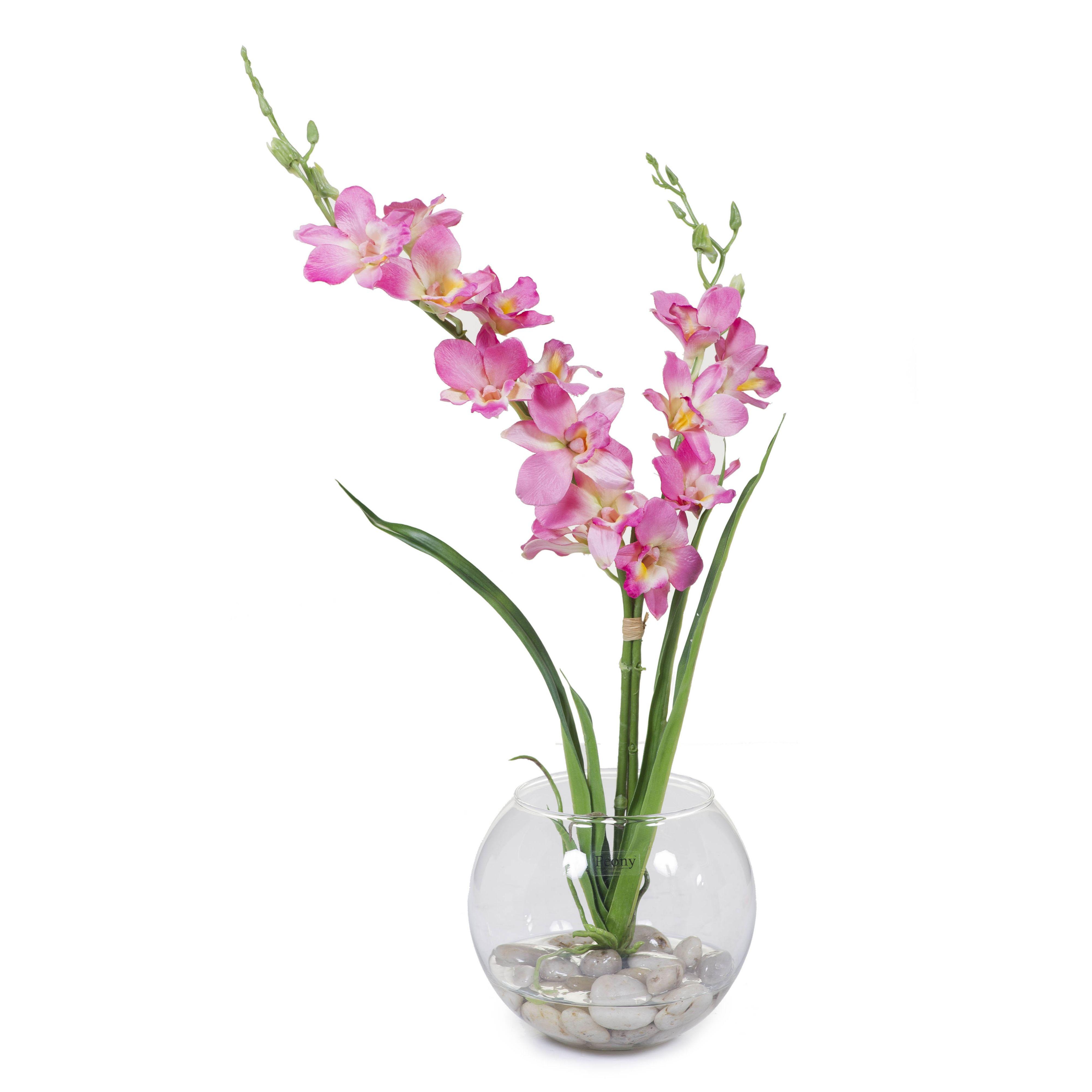 Orchidee bamboo con foglie verdi in vaso tondo con pietre - Vaso in gres per orchidee ...
