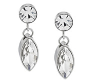 Stainless Steel Crystal Drop Earrings - J286501