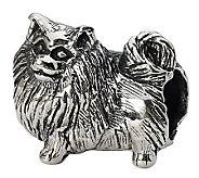 Prerogatives Sterling Side Glancing PomeranianBead - J299501