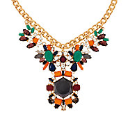 Joan Rivers Jeweled Statement Necklace on 18 Curb Chain - J317405