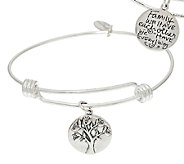 Extraordinary Life Sterling Silver Crystal Charm Bangles - J326005
