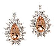 Smithsonian Simulated Thompson Diamond Earrings - J265607