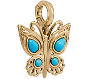 Brass & Turquoise Butterfly Charm by AmericanWest - J375511