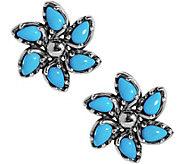 Carolyn Pollack Sleeping Beauty Turquoise Button Earrings - J383512