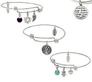Extraordinary Life Set of 3 Sterling Silver Expandable Charm Bangles - J271213