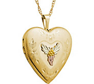 Black Hills Locket Pendant w/Chain 10K/12K - J379416