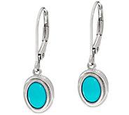 Sleeping Beauty Turquoise Sterling Silver Drop Earrings - J330918