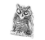 Prerogatives Sterling Owl Bead - J109320