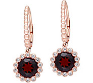 14K 3.20 cttw Garnet & 1/4 cttw Diamond Earrings - J377822