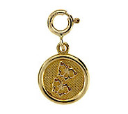 14K Yellow Gold Friendship Circle Charm - J105823