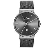 Skagen Mens Stainless Steel Gray Dial Mesh Bracelet Watch - J339023