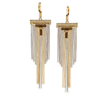 Wildlife by Heidi Klum Fashion Fringe Lever Back Earrings