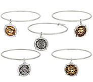 The Elizabeth Taylor Set of 5 Silvertone Coin Charm Bangles - J323528