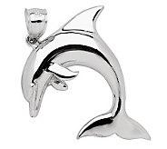 Sterling 2-D Dolphin Pendant - J110232